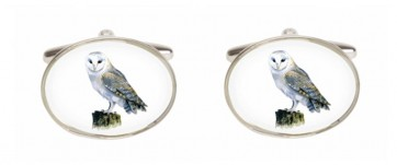Novelty Owl Cufflinks