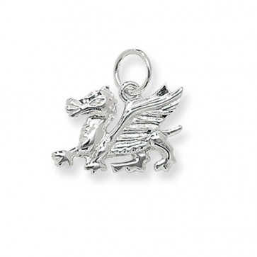 Children's Sterling Silver Medium Welsh Dragon Pendant On A Curb Necklace