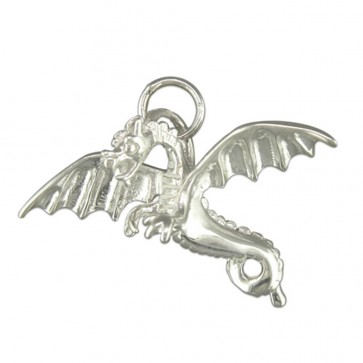 Children's Sterling Silver Flying Dragon Pendant On A Curb Necklace